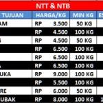 NTT & NTB